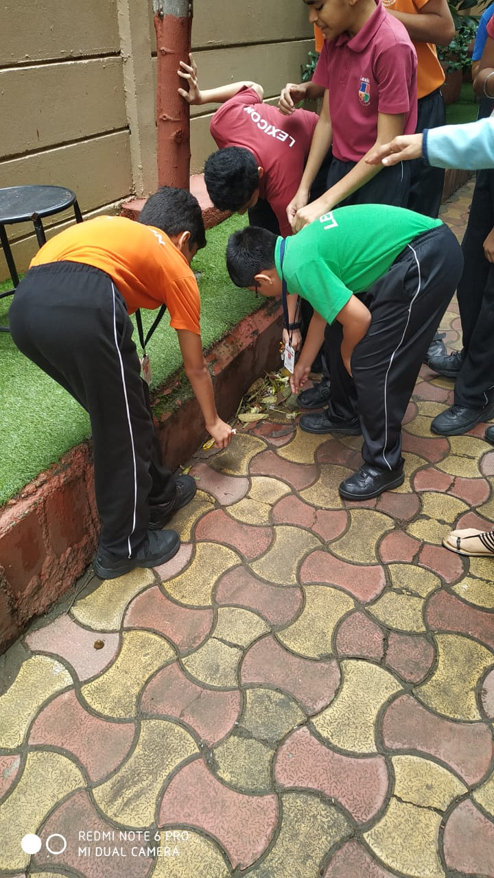 Swachhata Pakwada- Cleanliness drive 2019 (11)